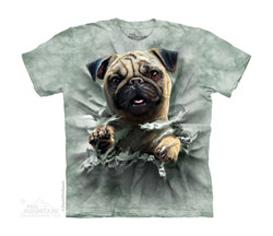 Image for The Mountain Youth T-Shirt - Pug Breakthrough