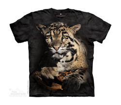Image for The Mountain Youth T-Shirt - Clouded Leopard