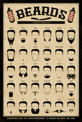 Image for Beards the Art of Manliness Poster