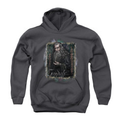 Image for The Hobbit Youth Hoodie - Gandalf