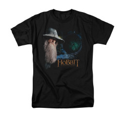 Image for The Hobbit T-Shirt - The Door