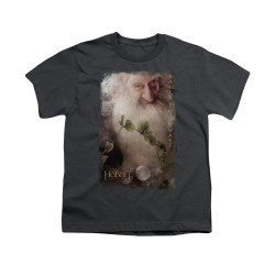 Image for The Hobbit Youth T-Shirt - Balin