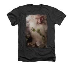 Image for The Hobbit Heather T-Shirt - Balin