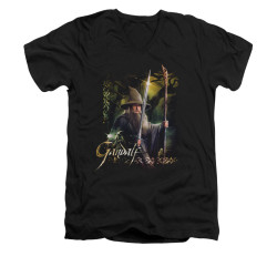 Image for The Hobbit V-Neck T-Shirt - Sword and Staff