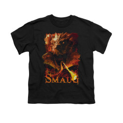 Image for The Hobbit Youth T-Shirt - Smolder