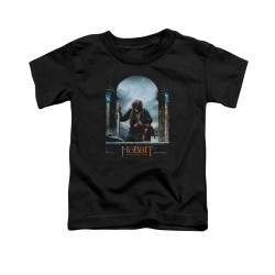 Image for The Hobbit Toddler T-Shirt - Bilbo Poster