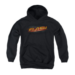 Image for Flash TV Show Youth Hoodie - Logo