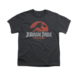 Image for Jurassic Park Youth T-Shirt - Faded Logo