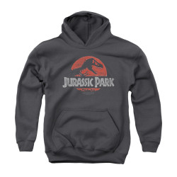 Image for Jurassic Park Youth Hoodie - Faded Logo