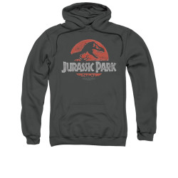 Image for Jurassic Park Hoodie - Faded Logo