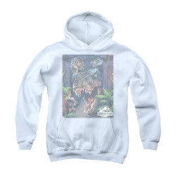 Image for Jurassic Park Youth Hoodie - Giant Door