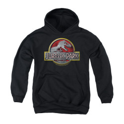 Image for Jurassic Park Youth Hoodie - Logo