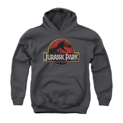 Image for Jurassic Park Youth Hoodie - Stone Logo