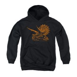 Image for Jurassic Park Youth Hoodie - Tri Mount