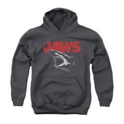 Image for Jaws Youth Hoodie - Cracked Jaw
