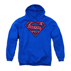 Image for Superman Youth Hoodie - Paisley Shield