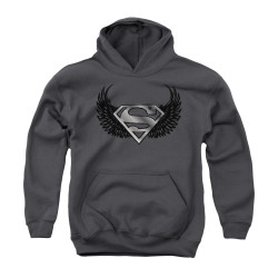 Image for Superman Youth Hoodie - Dirty Wings