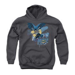 Image for Batman Youth Hoodie - Into The Night