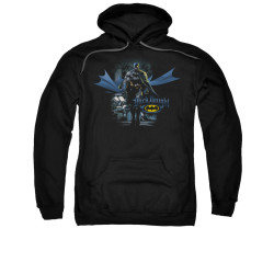 Image for Batman Hoodie - From The Depths