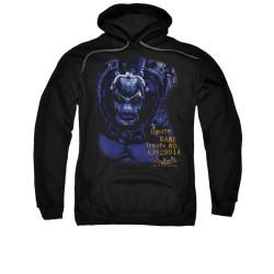 Image for Batman Arkham Asylum Hoodie - Arkham Bane