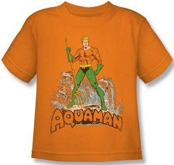 Image for Aquaman Distressed Kid's T-Shirt