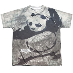 Image for Kung Fu Panda Youth T-Shirt - Sublimated Brushed Panda