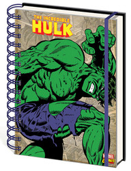 Image for Hulk Journal - Retro