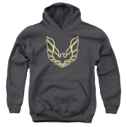 Image for Pontiac Youth Hoodie - Iconic Firebird