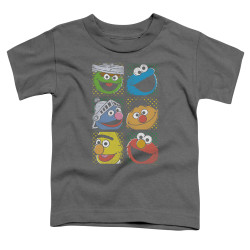 Image for Sesame Street Toddler T-Shirt - Group Squares