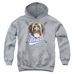 Image for The Sandlot Youth Hoodie - the Beast