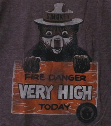 Image for Smokey the Bear T-Shirt