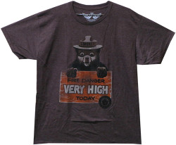 Image Closeup for Smokey the Bear T-Shirt