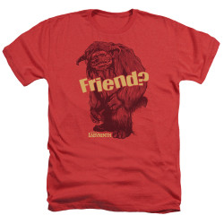 Image for Labyrinth Heather T-Shirt - Ludo Friend