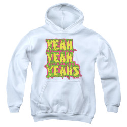 Image for Yeah Yeah Yeahs Youth Hoodie - Mosquito