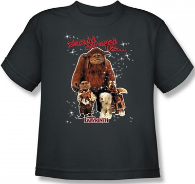 Image for Labyrinth Youth T-Shirt - Should You Need Us...