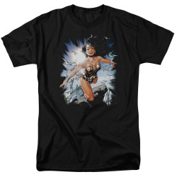 Image for Wonder Woman T-Shirt - Princess of Themyscira