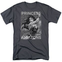 Image for Wonder Woman T-Shirt - Princess of the Amazons