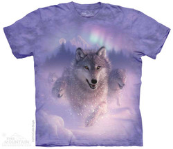 Image for The Mountain T-Shirt - Northern Lights