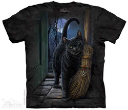 Image for The Mountain T-Shirt - A Brush With Magic