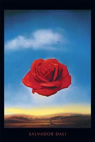 Image for Salvador Dali Poster - Meditative Rose