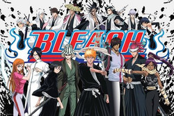 Image for Bleach Poster
