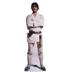 Image for Star Wars Lifesize Standup - Luke Skywalker
