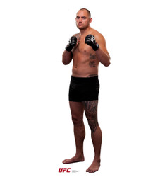 Image for UFC Lifesize Standup - Travis Browne