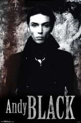 Image for Andy Black Poster - Stone