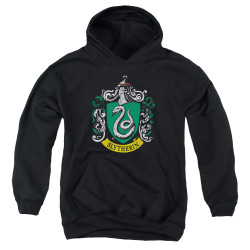 Image for Harry Potter Youth Hoodie - Slytherin Crest