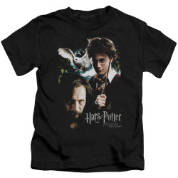 Image for Harry Potter Harry and Sirius Kid's T-Shirt