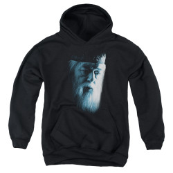Image for Harry Potter Youth Hoodie - Dumbledore Face