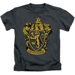 Image for Harry Potter Gryffindor Logo Kid's T-Shirt