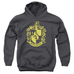 Image for Harry Potter Youth Hoodie - Classic Hufflepuff Crest