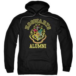 Image for Harry Potter Hoodie - Hogwarts Alumni